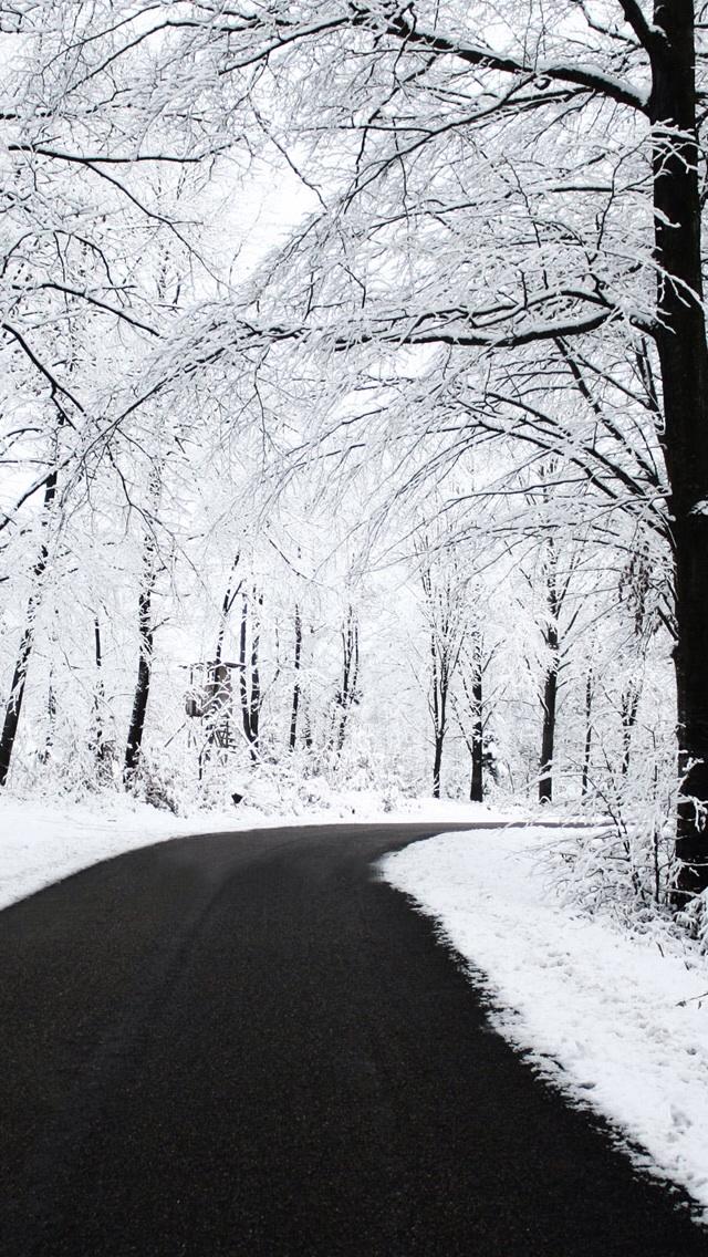 covered with snow مجموعه والپیپر با موضوع زمستان برای iPhone