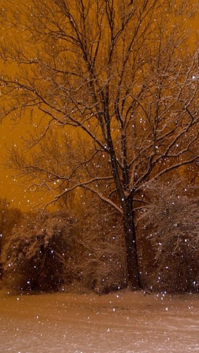 snowfall in kobenhav مجموعه والپیپر با موضوع زمستان برای iPhone