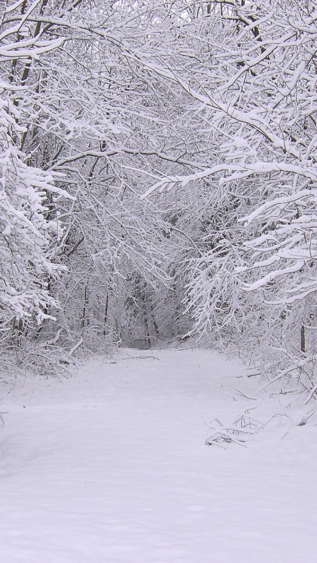 winter1 مجموعه والپیپر با موضوع زمستان برای iPhone