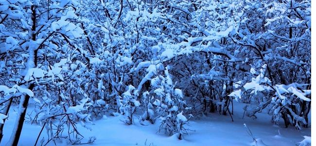 مجموعه والپیپر با موضوع زمستان برای iPhone